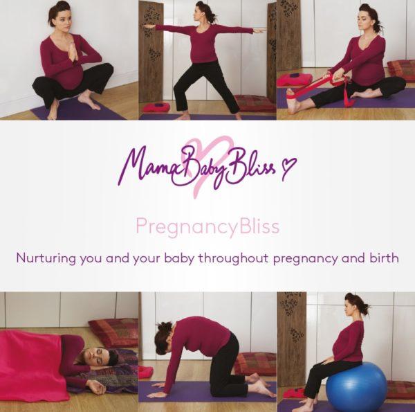 PregnancyBliss Booklet